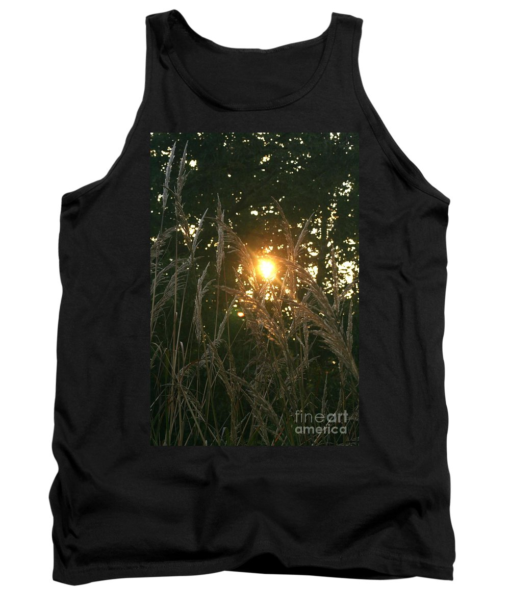 Light Tank Top featuring the photograph Autumn Grasses in the Morning by Nadine Rippelmeyer