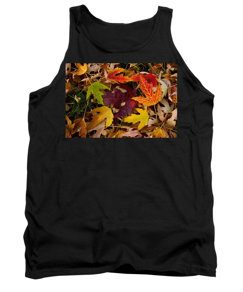 Leaves Tank Top featuring the photograph Autumn Leaves by James BO Insogna