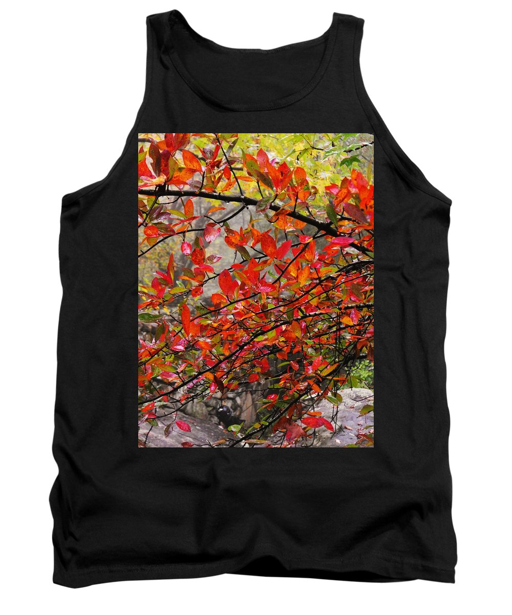 Autumn Trees Rock City Tank Top featuring the photograph Autumn Trees Rock City by Lori Mahaffey