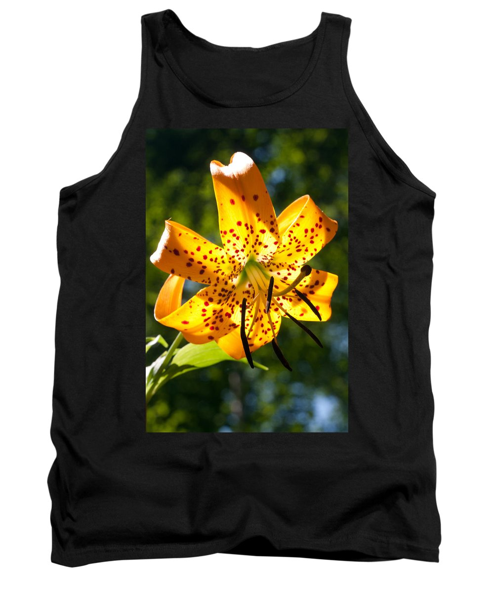 Flower Tank Top featuring the photograph Back-lit Yellow Tiger Lily by John Haldane