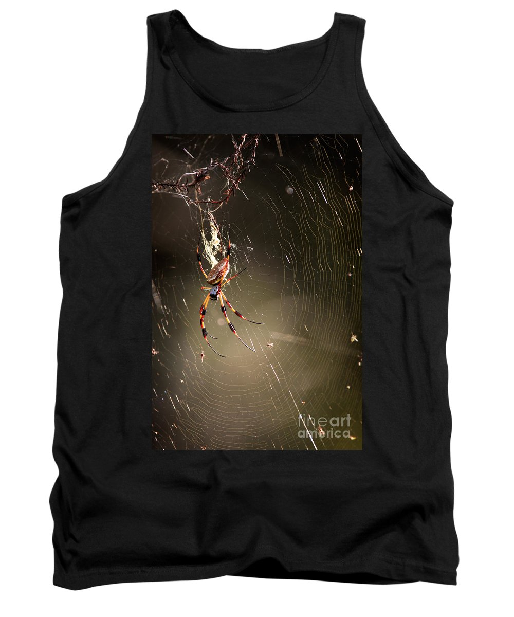 Banana Spider Tank Top featuring the photograph Banana Spider by Matt Suess