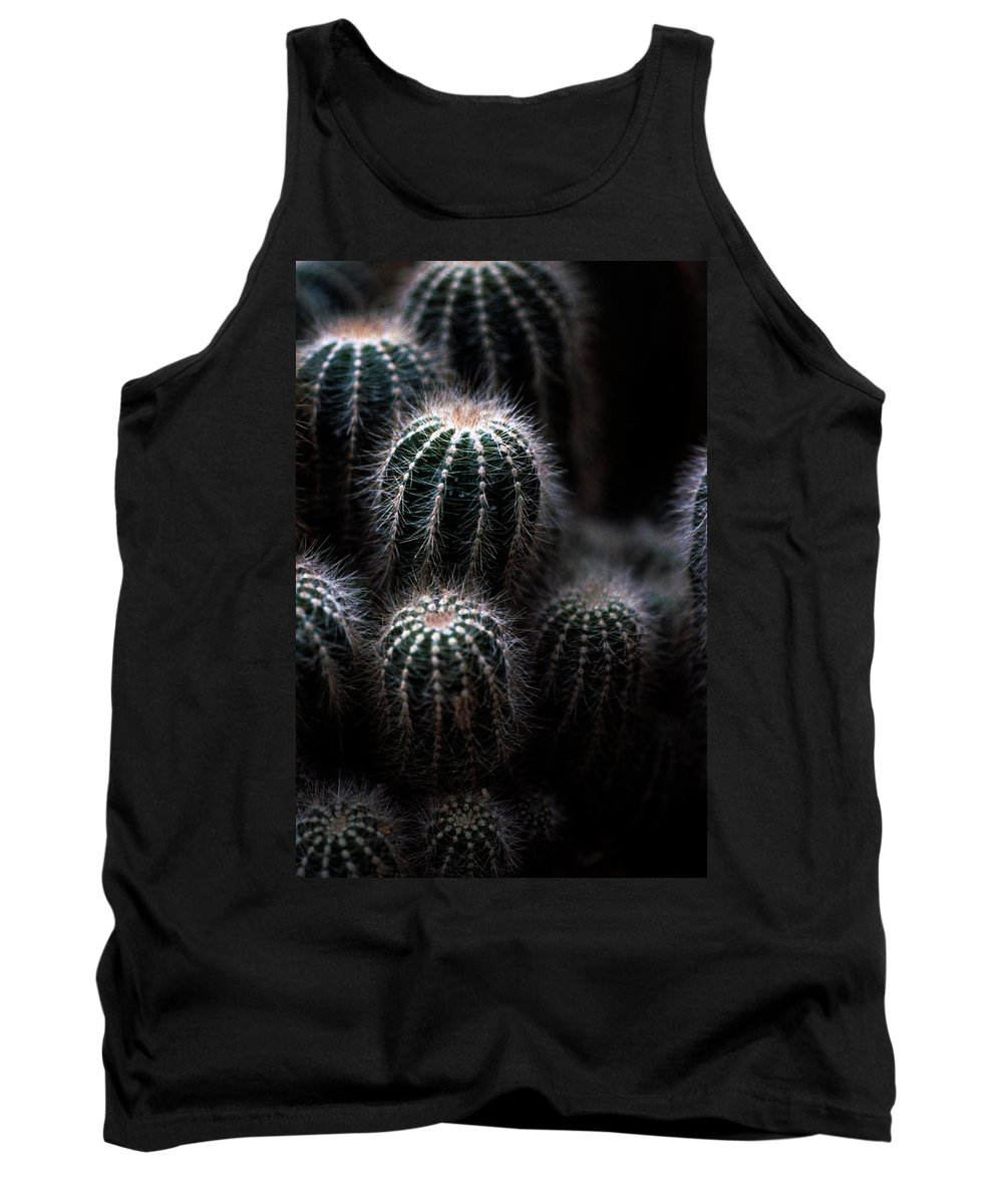 Brrel Cacus Tank Top featuring the photograph Barrel Cactus by Laurie Paci