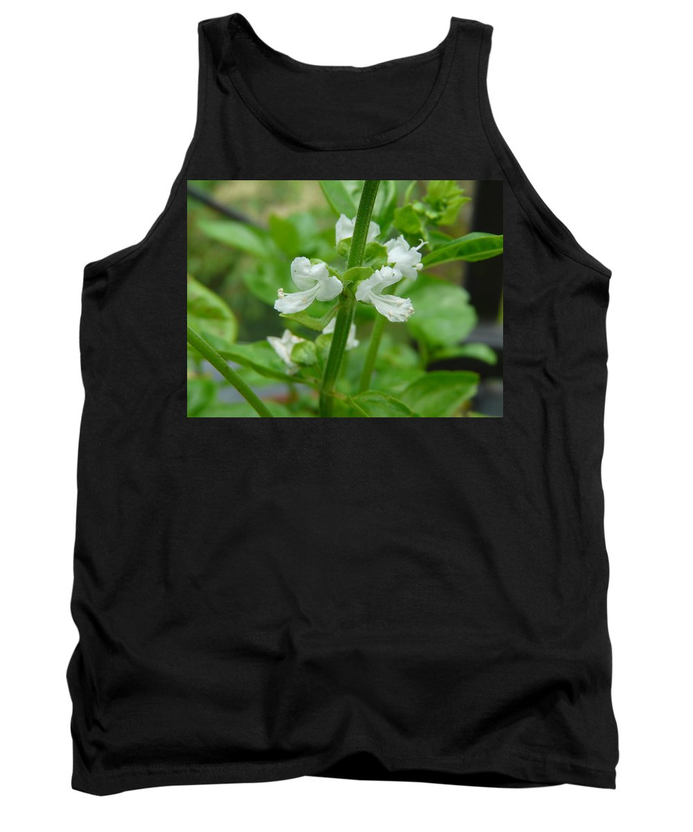Plant Tank Top featuring the photograph Basil Blossom by Valerie Ornstein