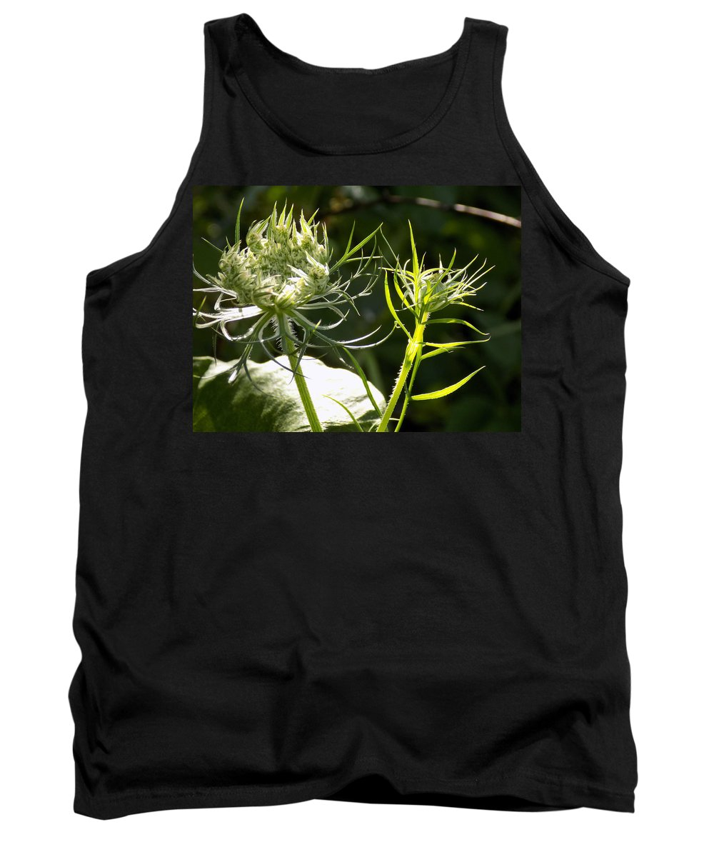Sunshine Tank Top featuring the photograph Basking In The Morning Sun by William Tasker