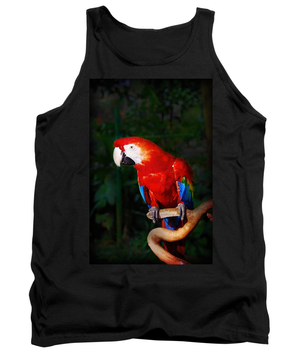 Bird Tank Top featuring the photograph Birdie by Charuhas Images