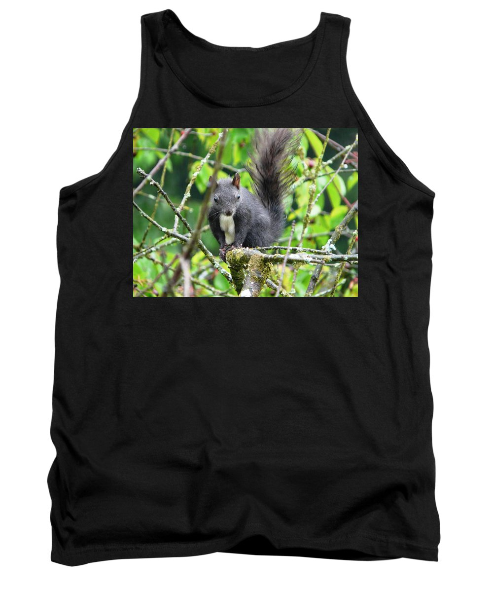 Animal Tank Top featuring the photograph Black Squirrel In The Cherry Tree by Valerie Ornstein