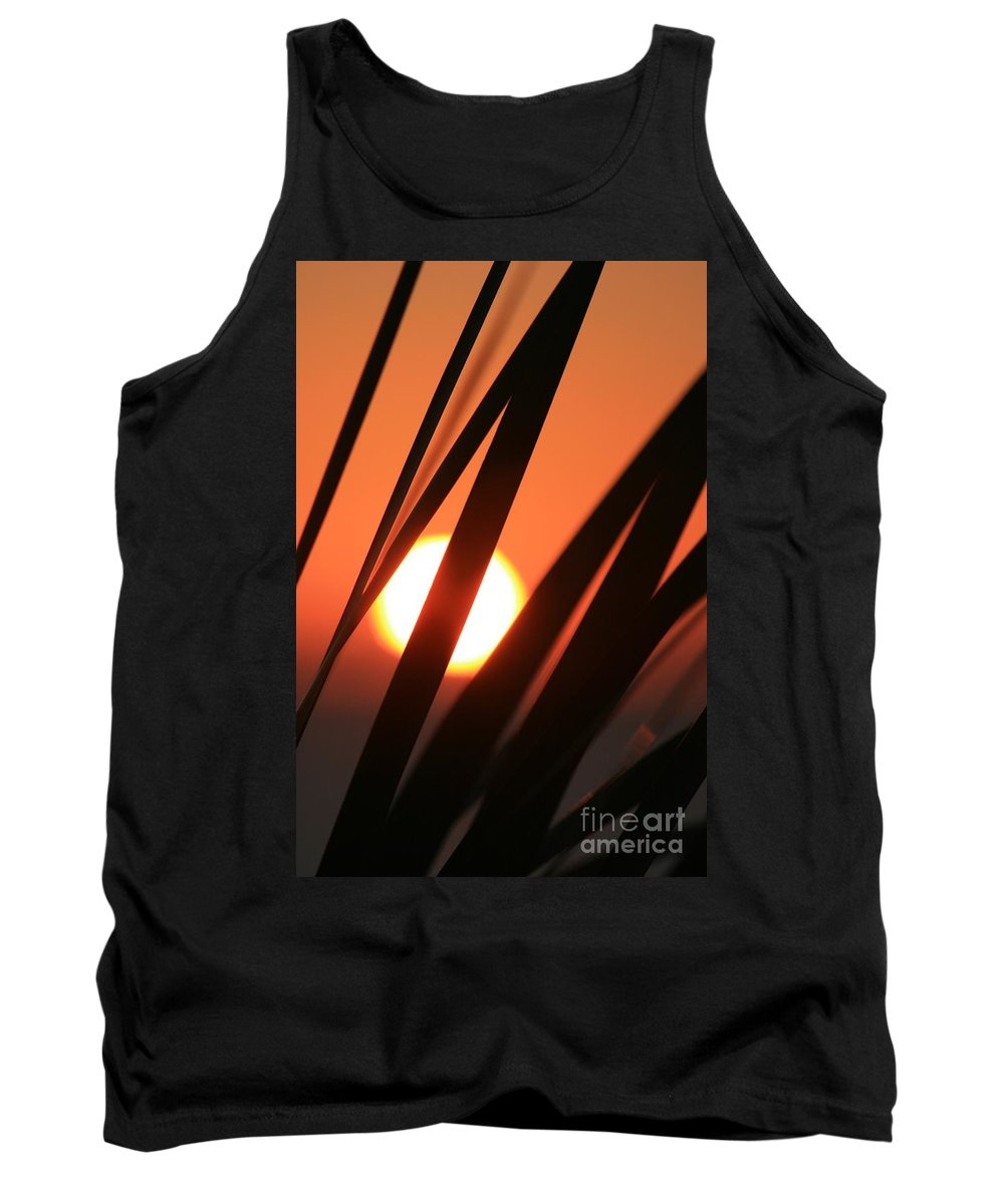 Sun Tank Top featuring the photograph Blazing Sunset And Grasses by Nadine Rippelmeyer