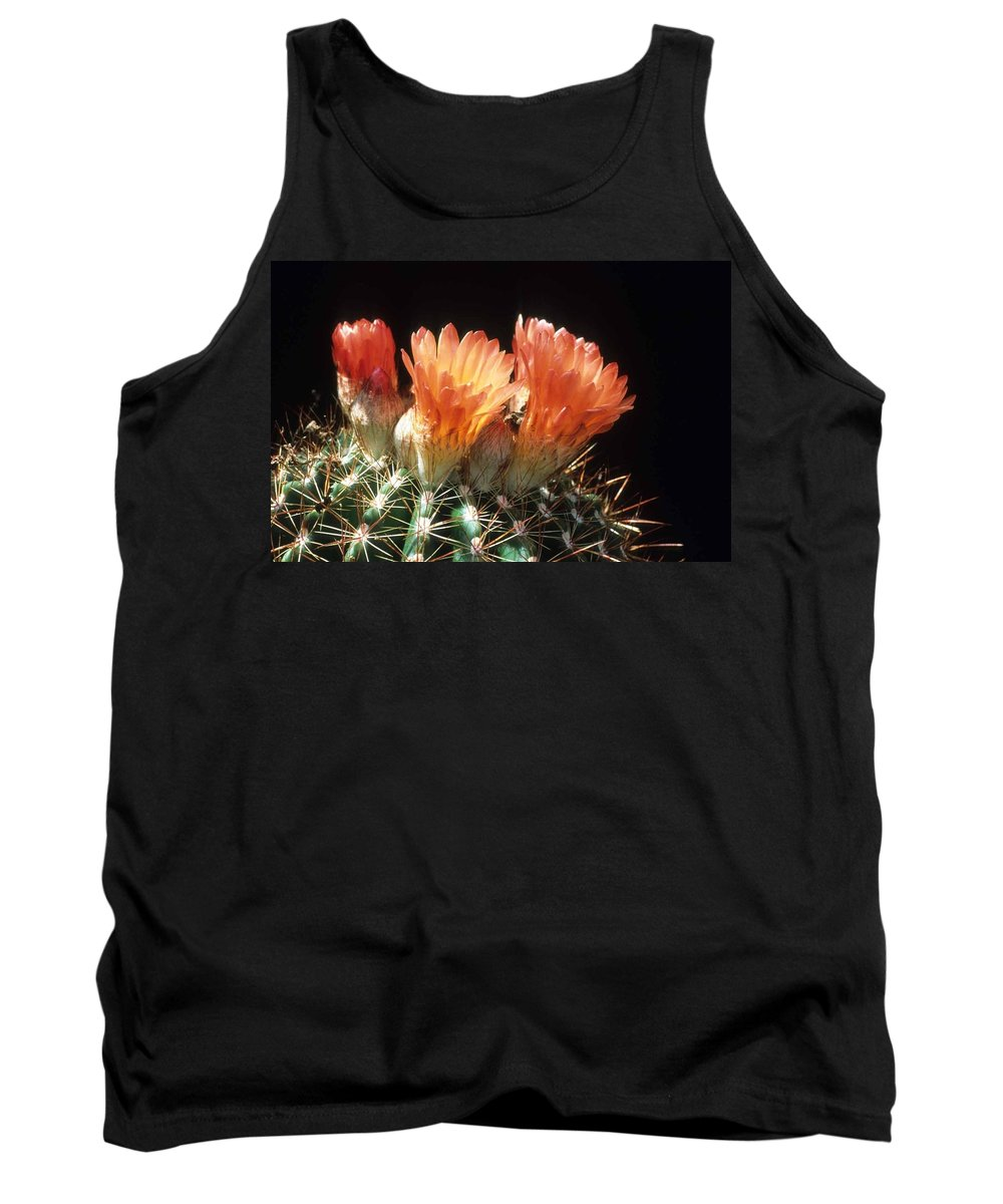 Barrel Cactus Tank Top featuring the photograph Bloomin' Barrel by Laurie Paci