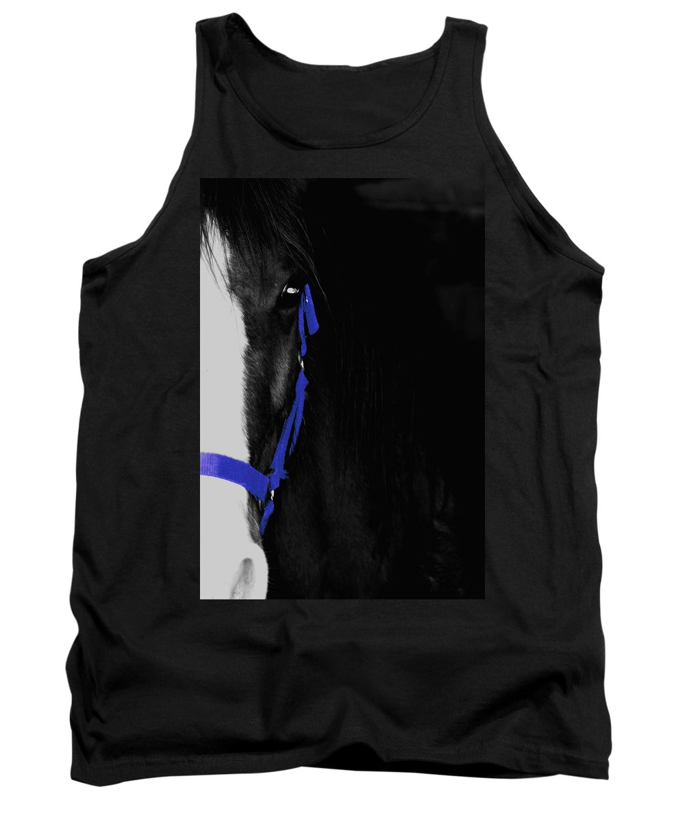 Horse Tank Top featuring the photograph Blue Halter by Hannah Breidenbach
