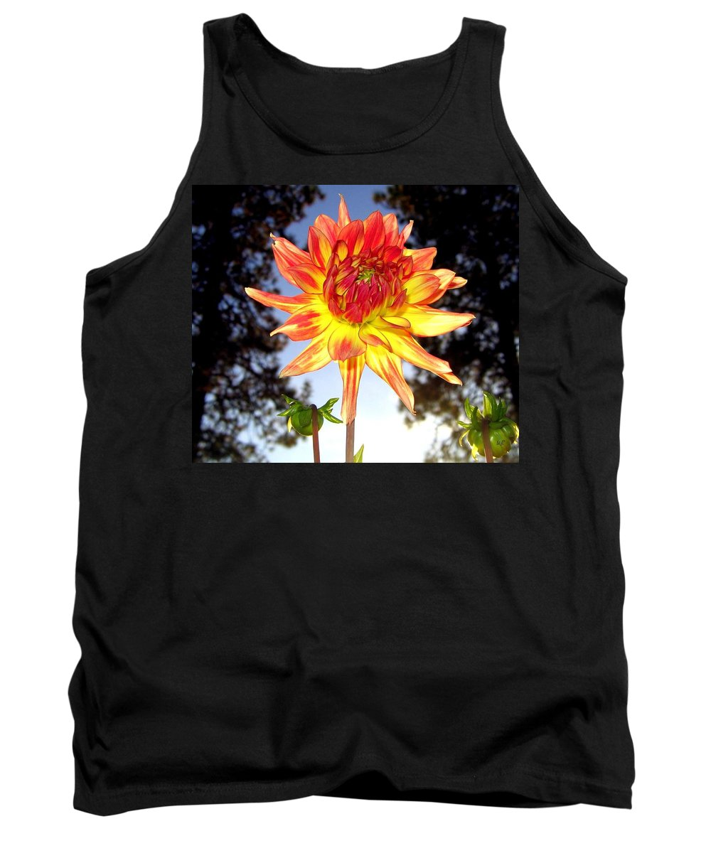 Dahlia Tank Top featuring the photograph Bold And Beautiful by Will Borden