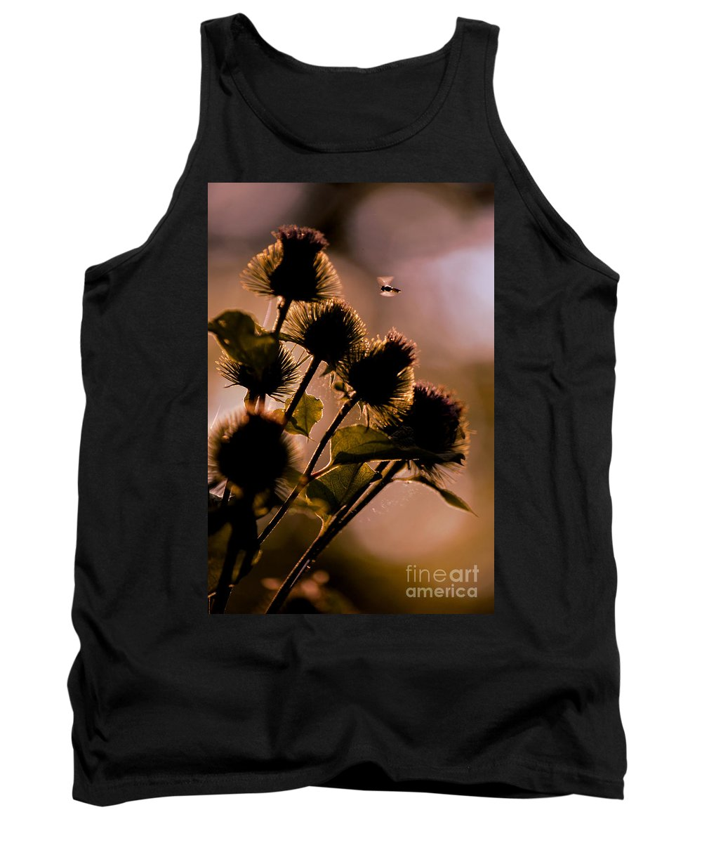 Plant Tank Top featuring the photograph Burdock Silhouette by Sandy Webster