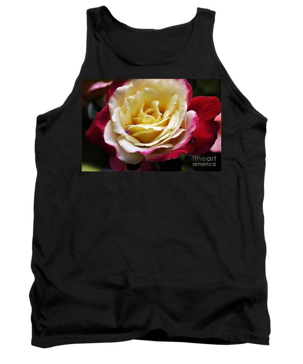 Clay Tank Top featuring the photograph Burst Of Rose by Clayton Bruster