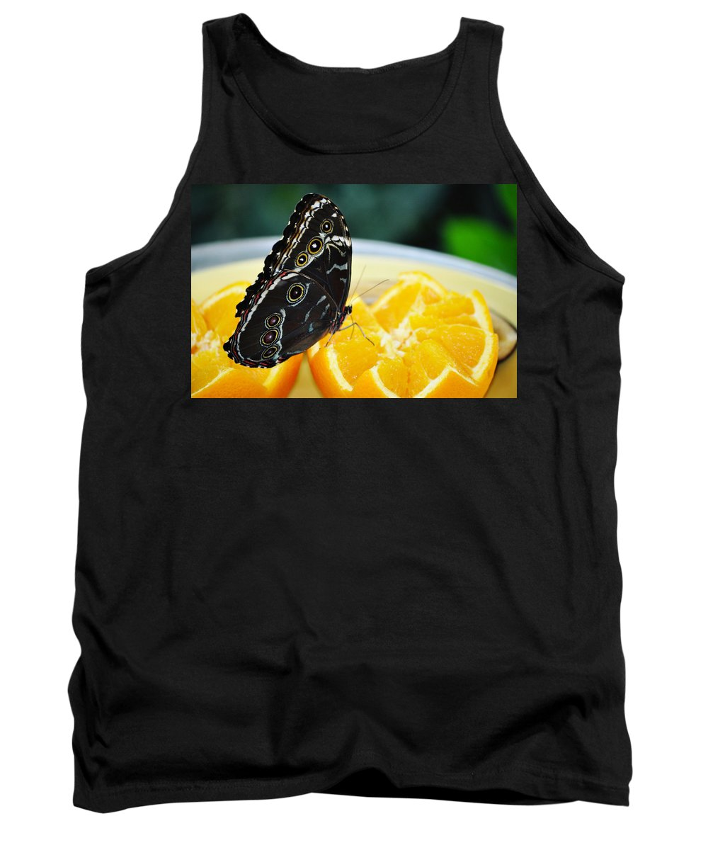 Peggy Notebaert Nature Museum Tank Top featuring the photograph Butterfly Haven Citrus by Kyle Hanson