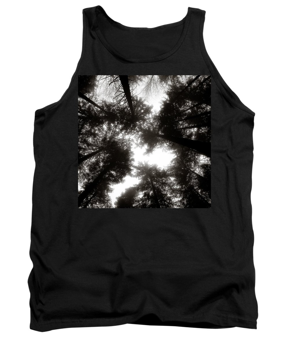 Trees Tank Top featuring the photograph Canopy by Dave Bowman