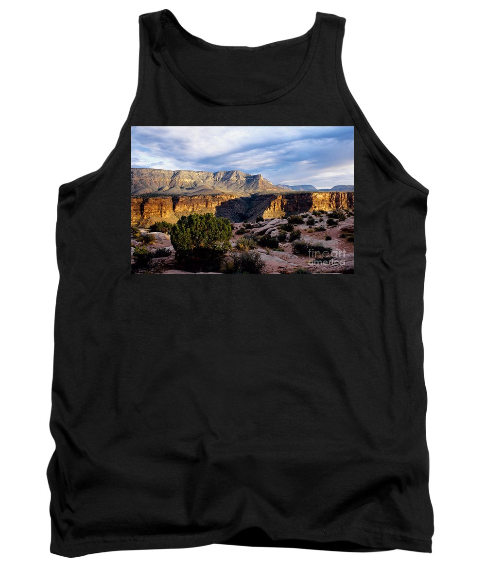 Toroweap Tank Top featuring the photograph Canyon Walls At Toroweap by Kathy McClure