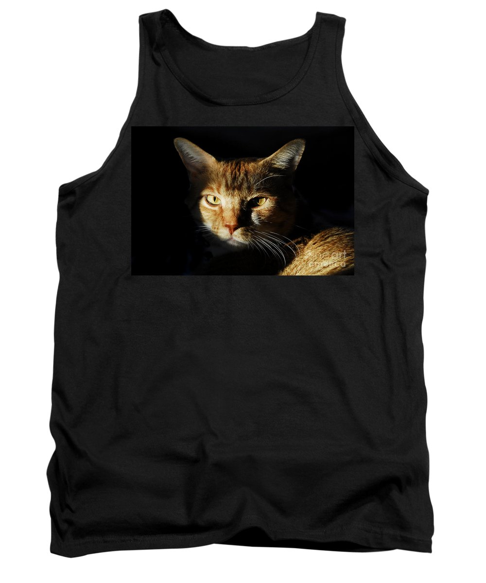 Cat Tank Top featuring the photograph Cat In Shadow by David Lee Thompson