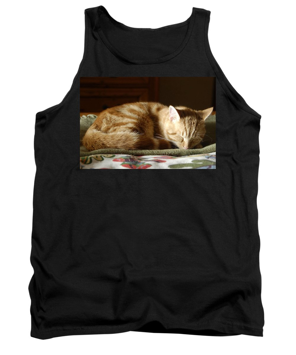 Cat Tank Top featuring the photograph Cat Nap by David Lee Thompson