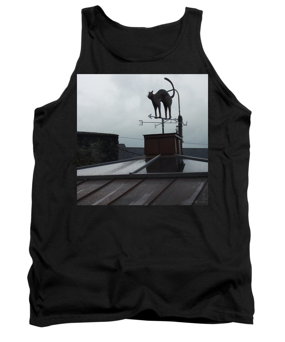 Cat Tank Top featuring the photograph Cat On A Cool Tin Roof by Tim Nyberg