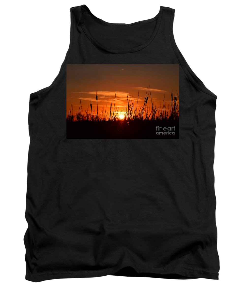 Cattails And Twilight Tank Top featuring the photograph Cattails And Twilight by Kathy M Krause