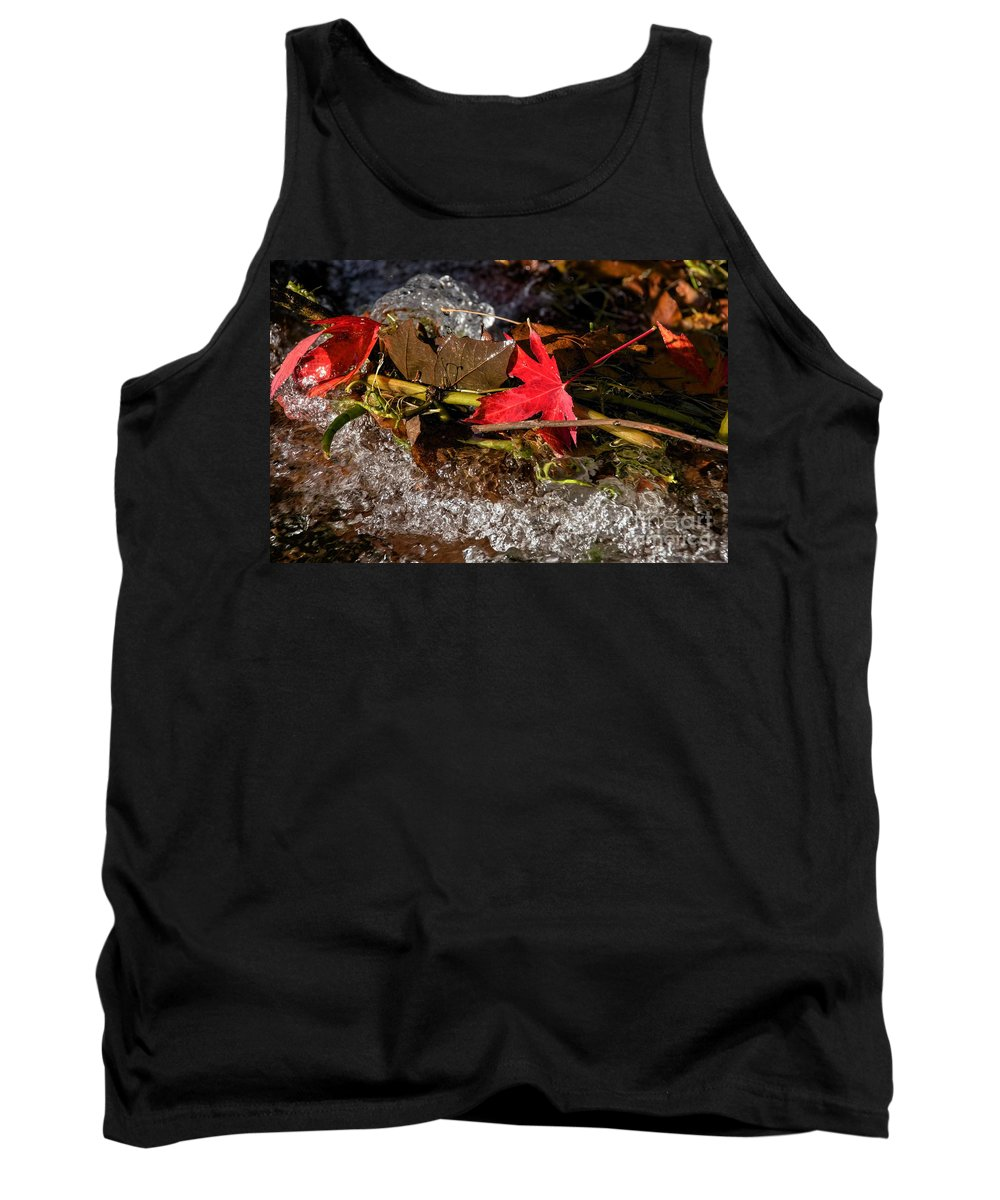 Leaves Tank Top featuring the photograph Caught In The Waterfall by Susie Peek