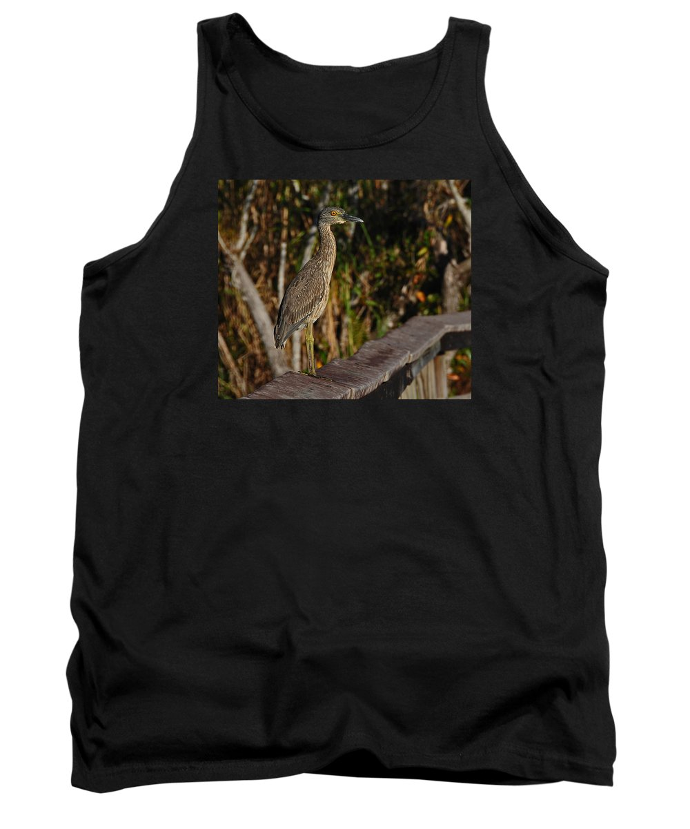 Feathers Animals Birds Fauna Tank Top featuring the photograph Caution by LOsorio Photography