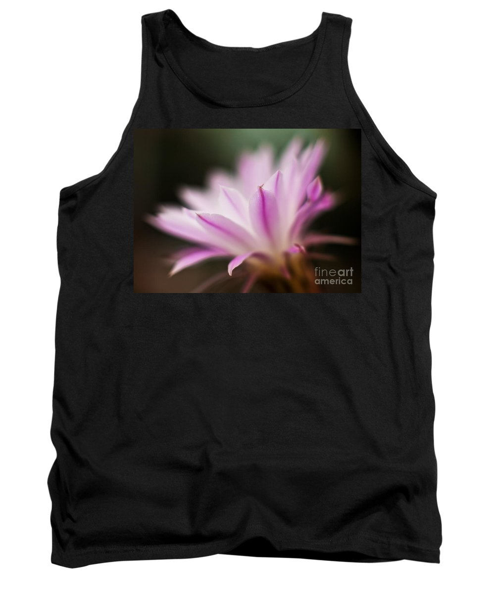 Cereus Tank Top featuring the photograph Cereus Glow by Mike Reid