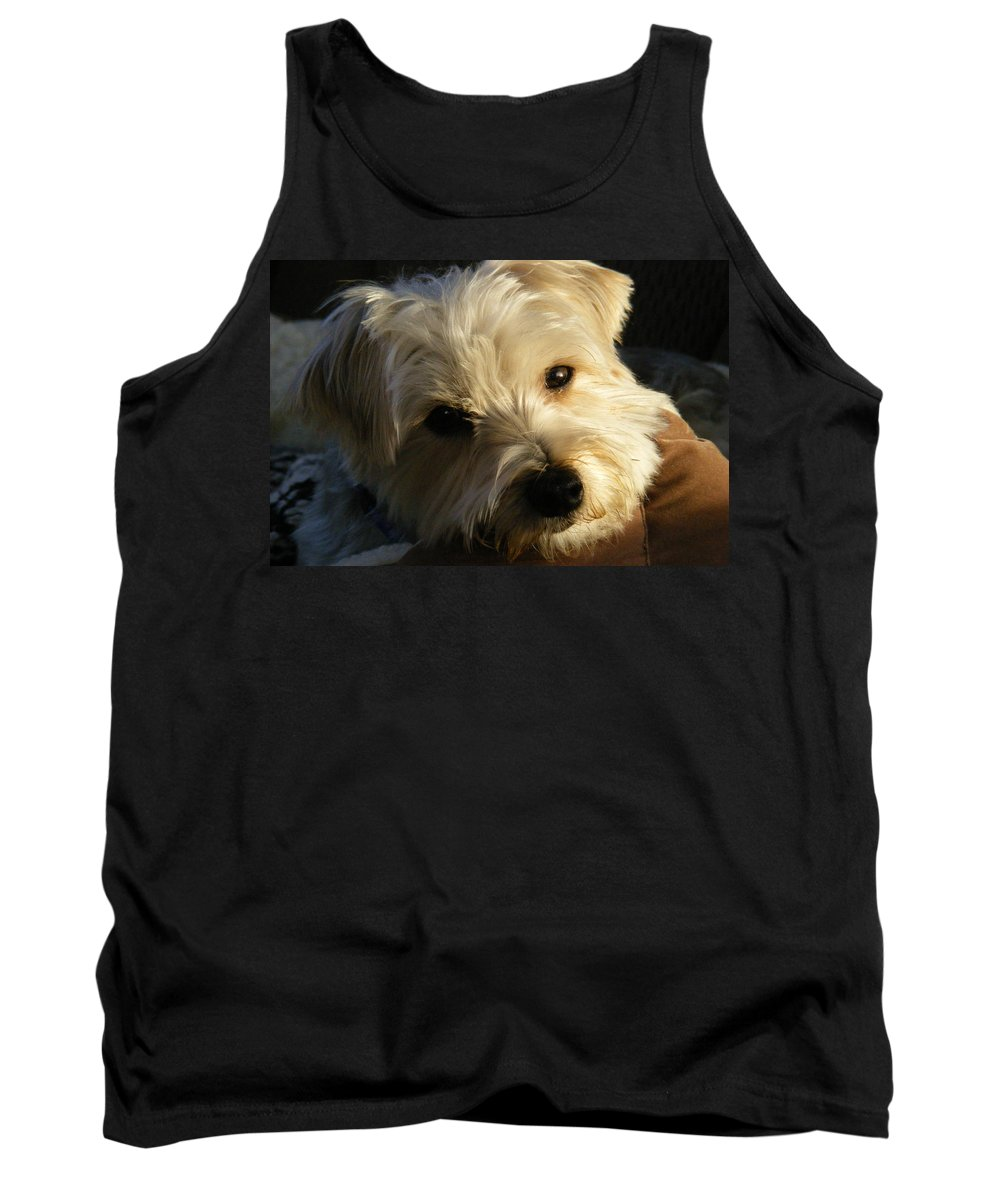 Dog Tank Top featuring the photograph Charlie by Ed Smith