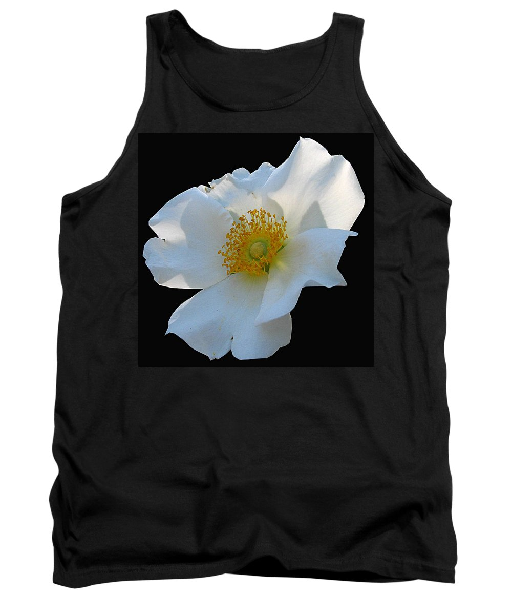 Cherokee Rose Tank Top featuring the photograph Cherokee Rose On Black by J M Farris Photography