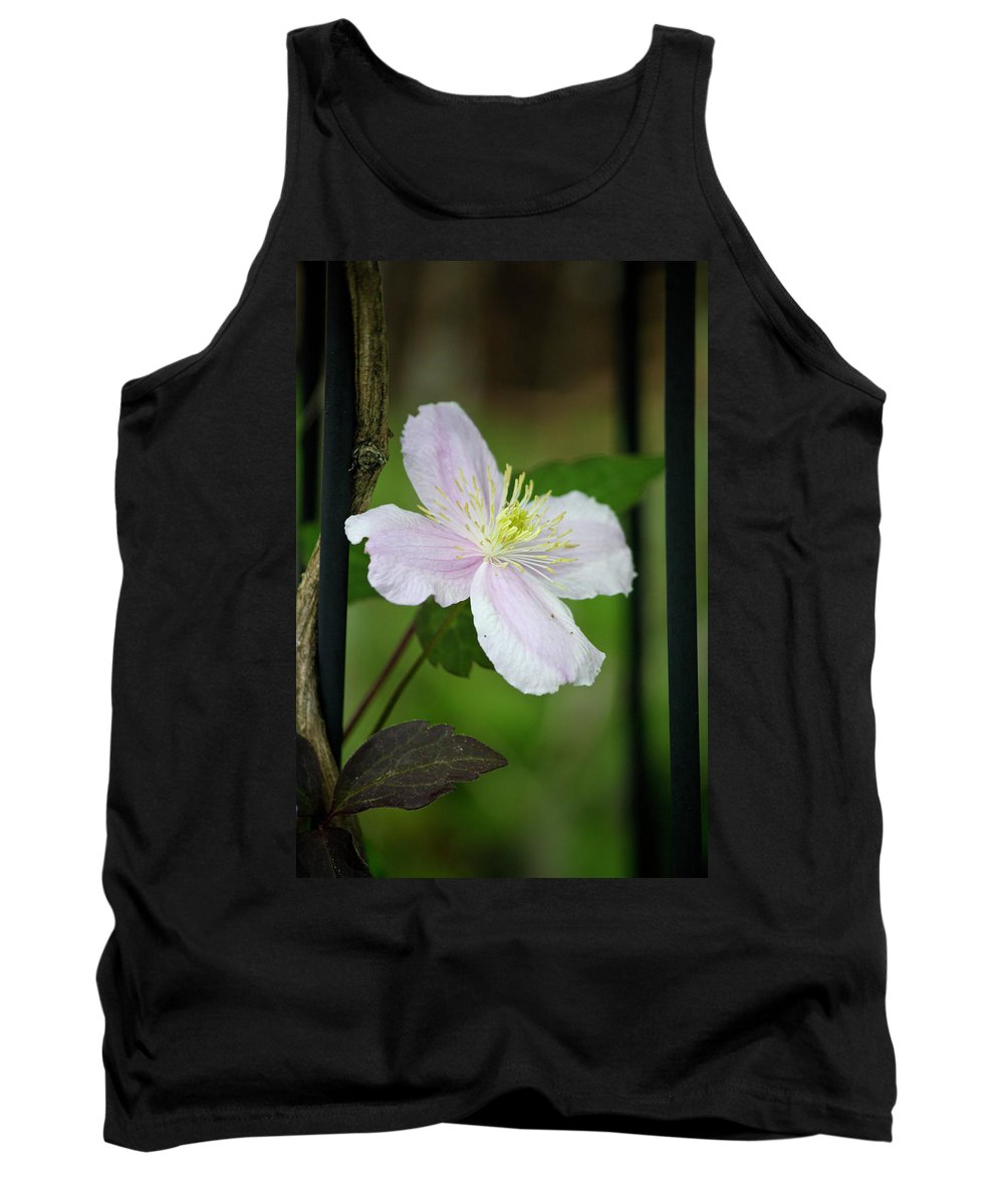 Clematis Tank Top featuring the photograph Clematis Montana Rubens Vine by Teresa Mucha
