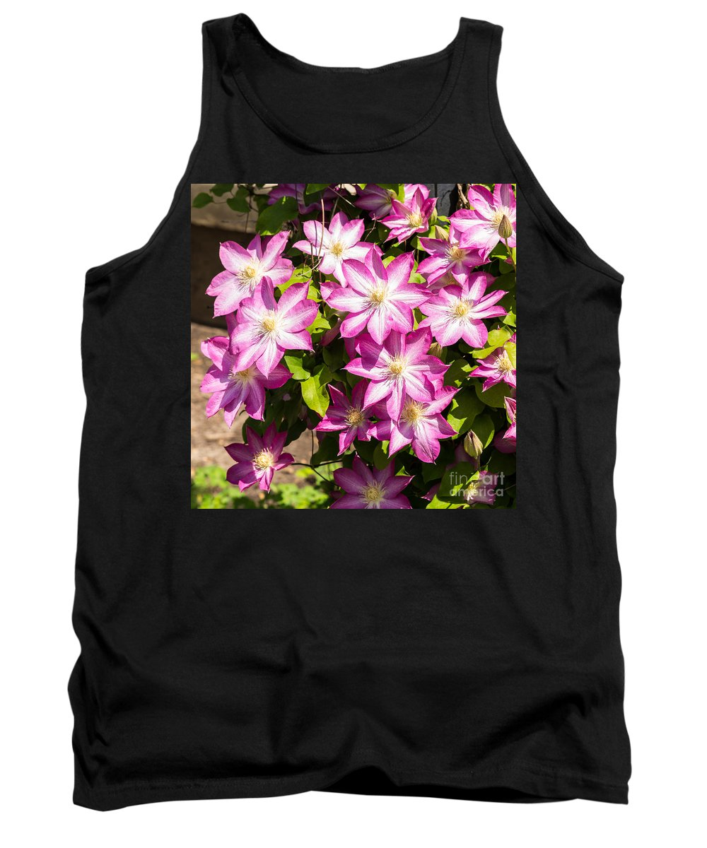 Flowers Tank Top featuring the photograph Clematis Vine by Terri Morris