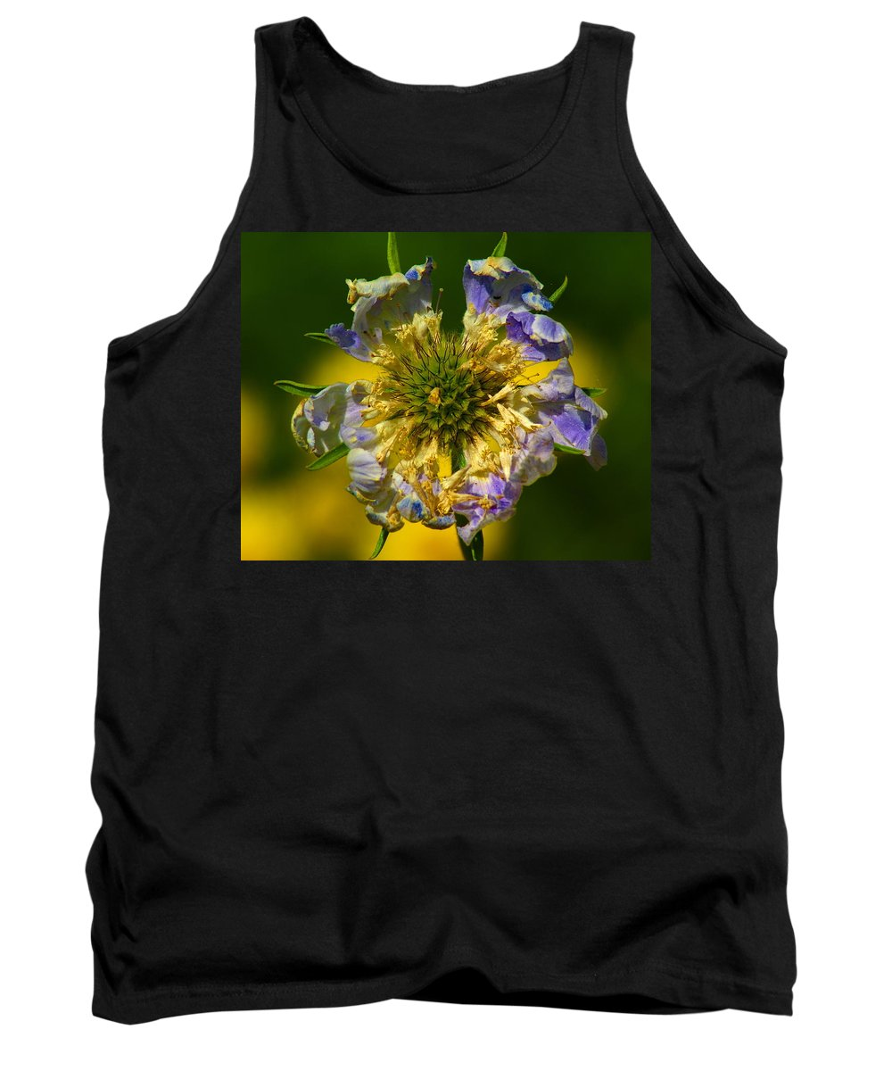 Nature Tank Top featuring the photograph Coloriffic by Ben Upham III