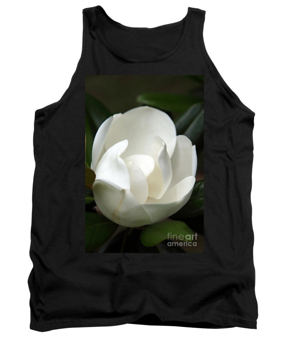 Magnolia Tank Top featuring the photograph Container by Amanda Barcon