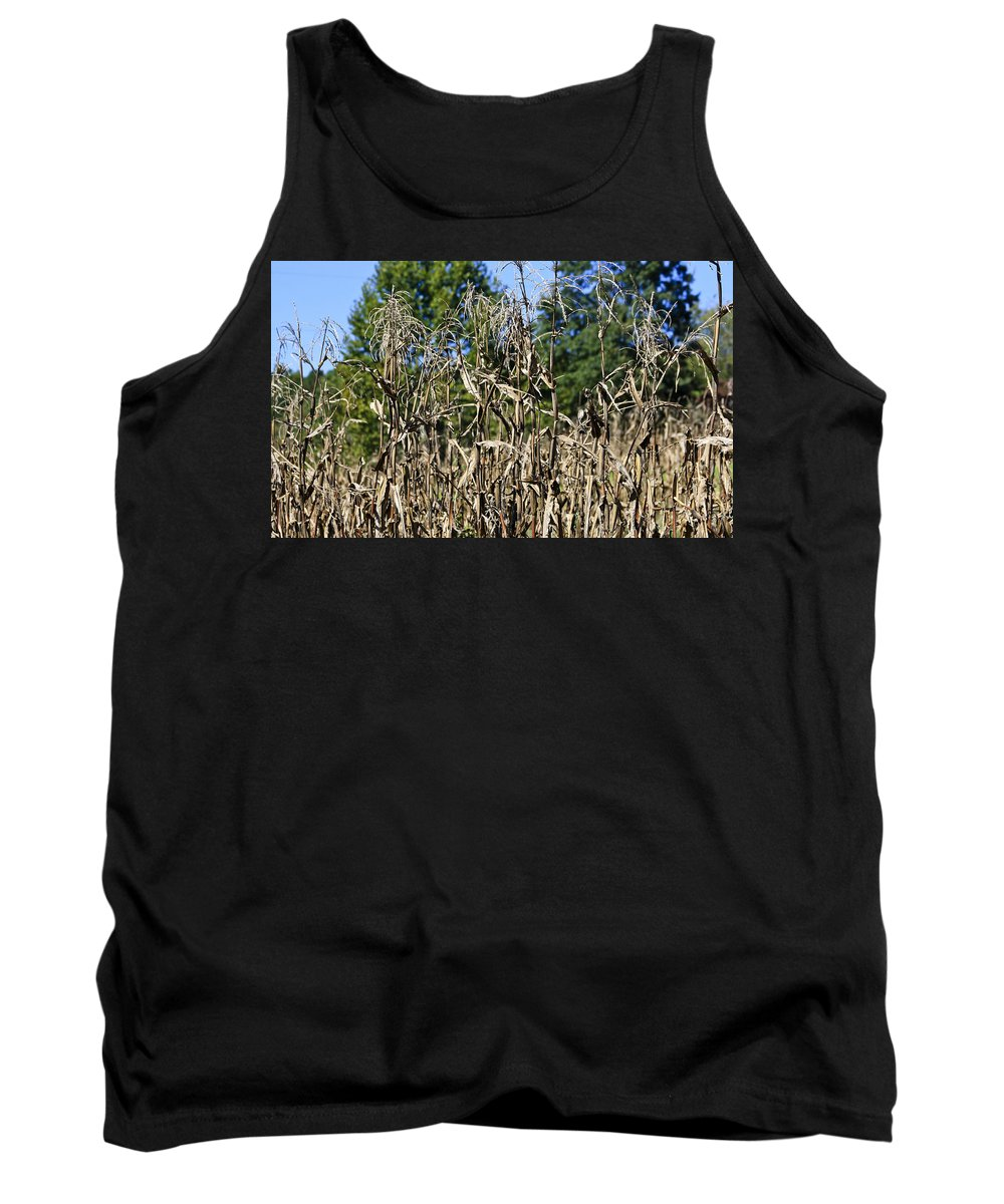 Corn Tank Top featuring the photograph Corn Stalks Drying by Teresa Mucha