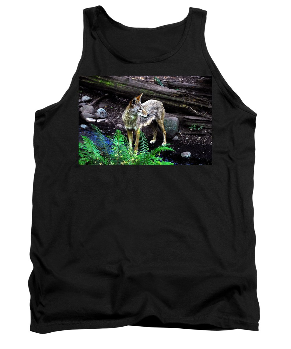Coyote Tank Top featuring the photograph Coyote In Mid Stream by David Lee Thompson
