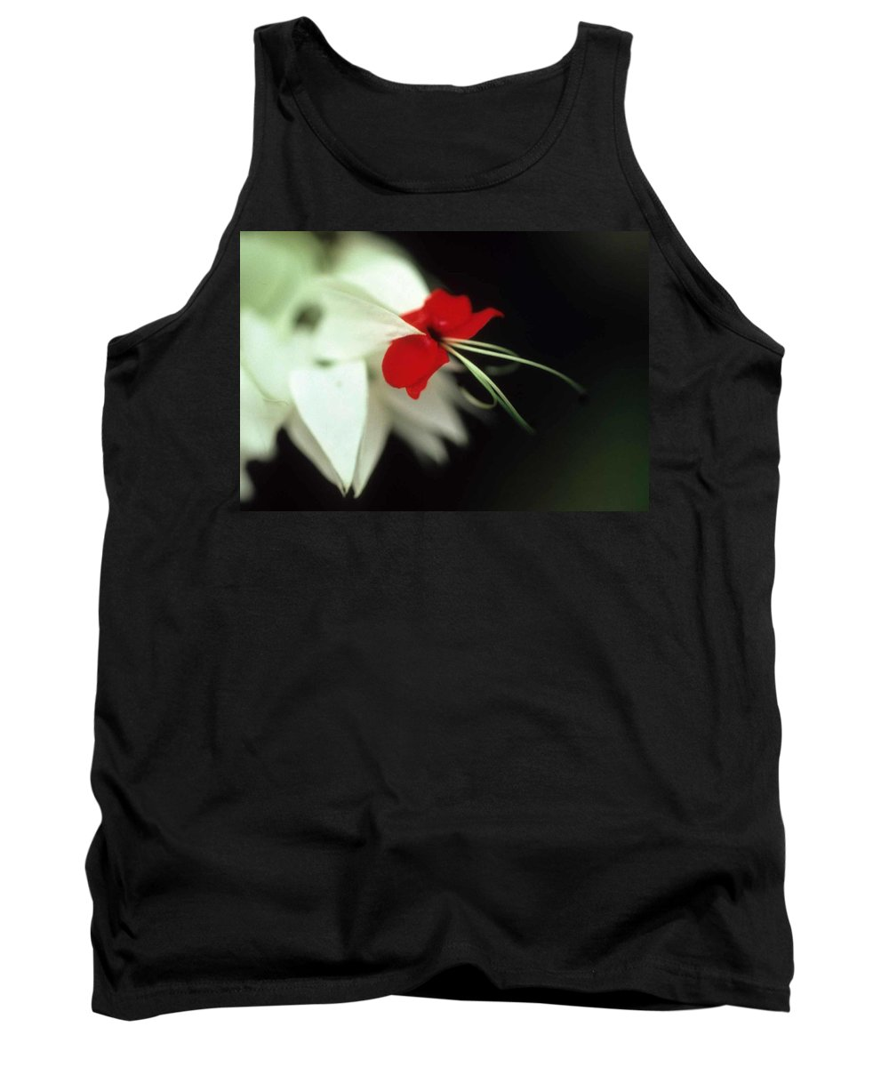 Crown Of Thorns Tank Top featuring the photograph Crown Of Thorns by Laurie Paci