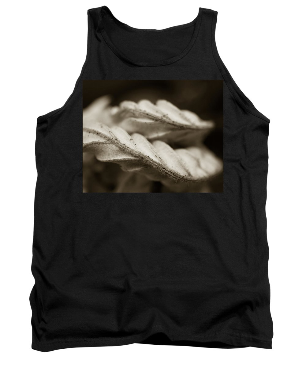 Flower Tank Top featuring the photograph Curves by Norah Holsten