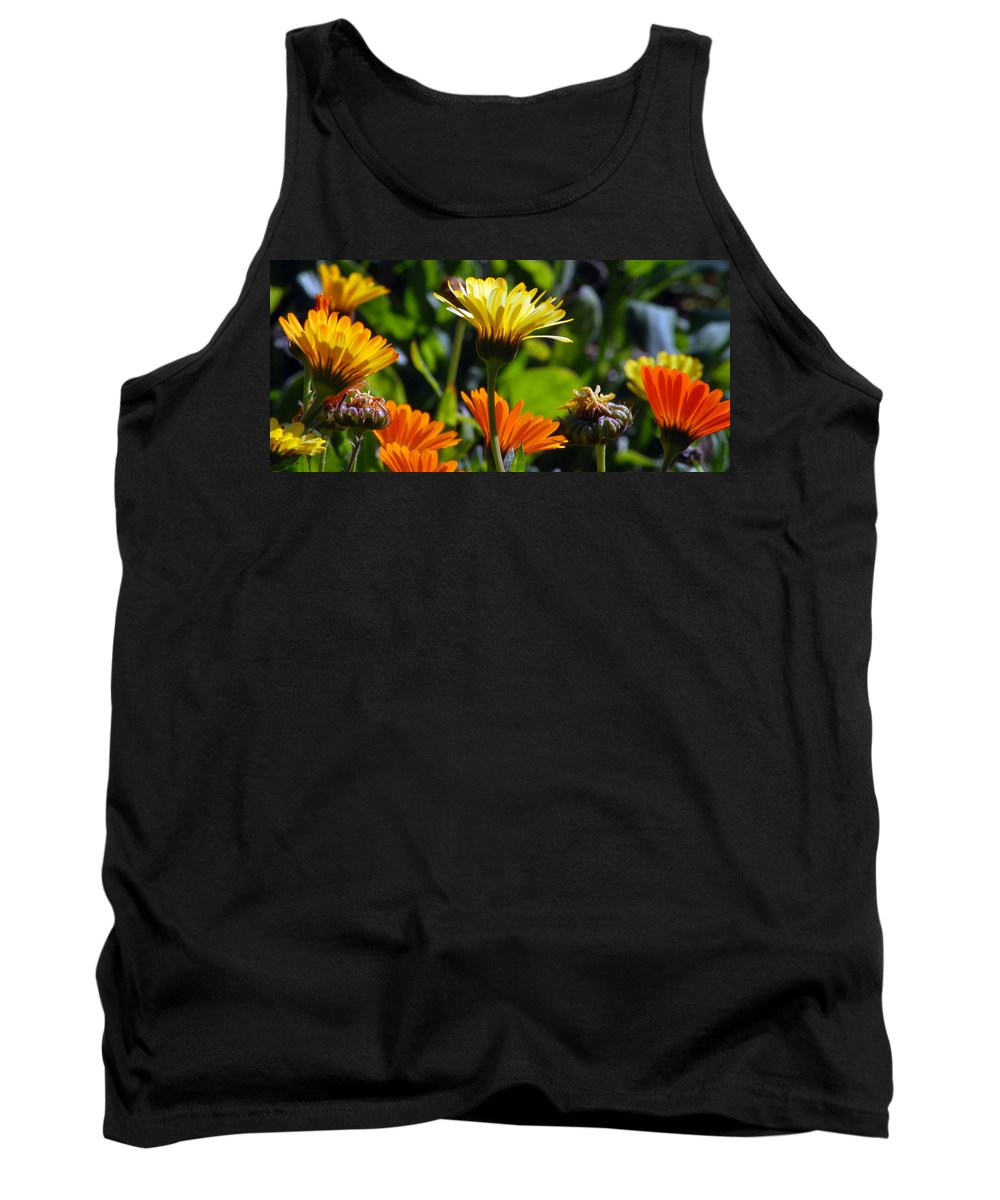 Dasy Tank Top featuring the photograph Daisies by Amy Fose