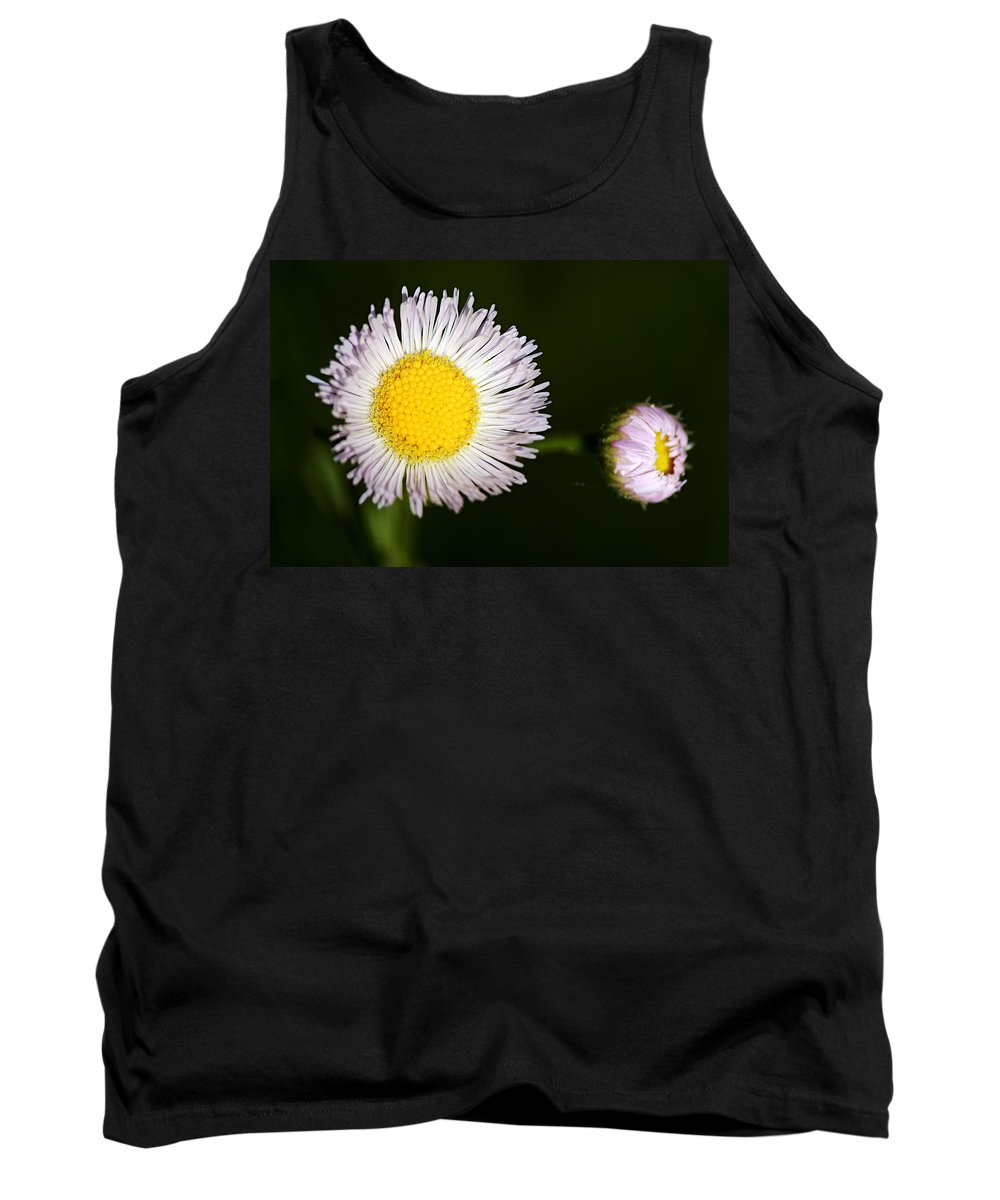 Fleabane Tank Top featuring the photograph Daisy Fleabane 2 by Larry Ricker