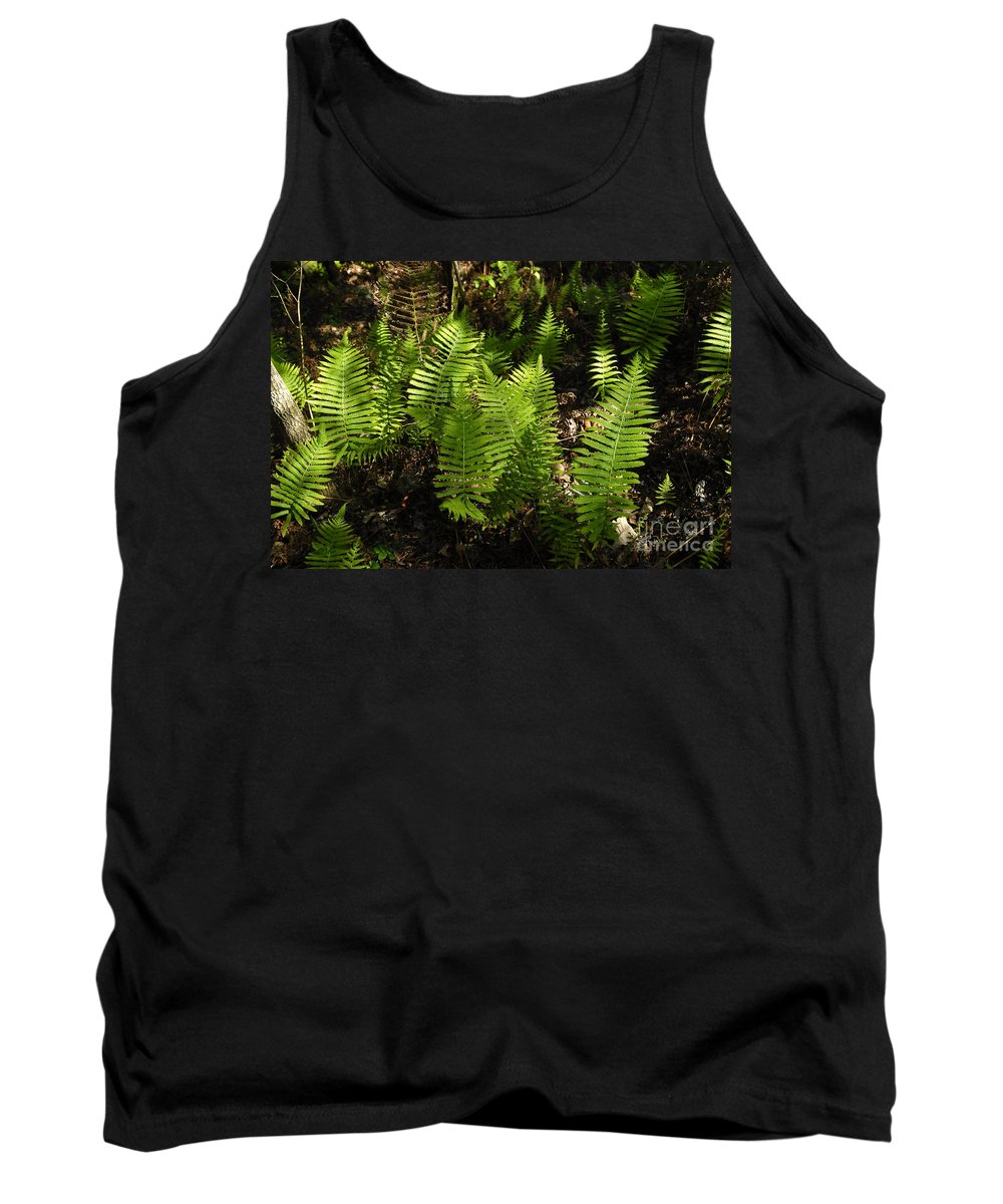 Ferns Tank Top featuring the photograph Dancing Ferns by David Lee Thompson