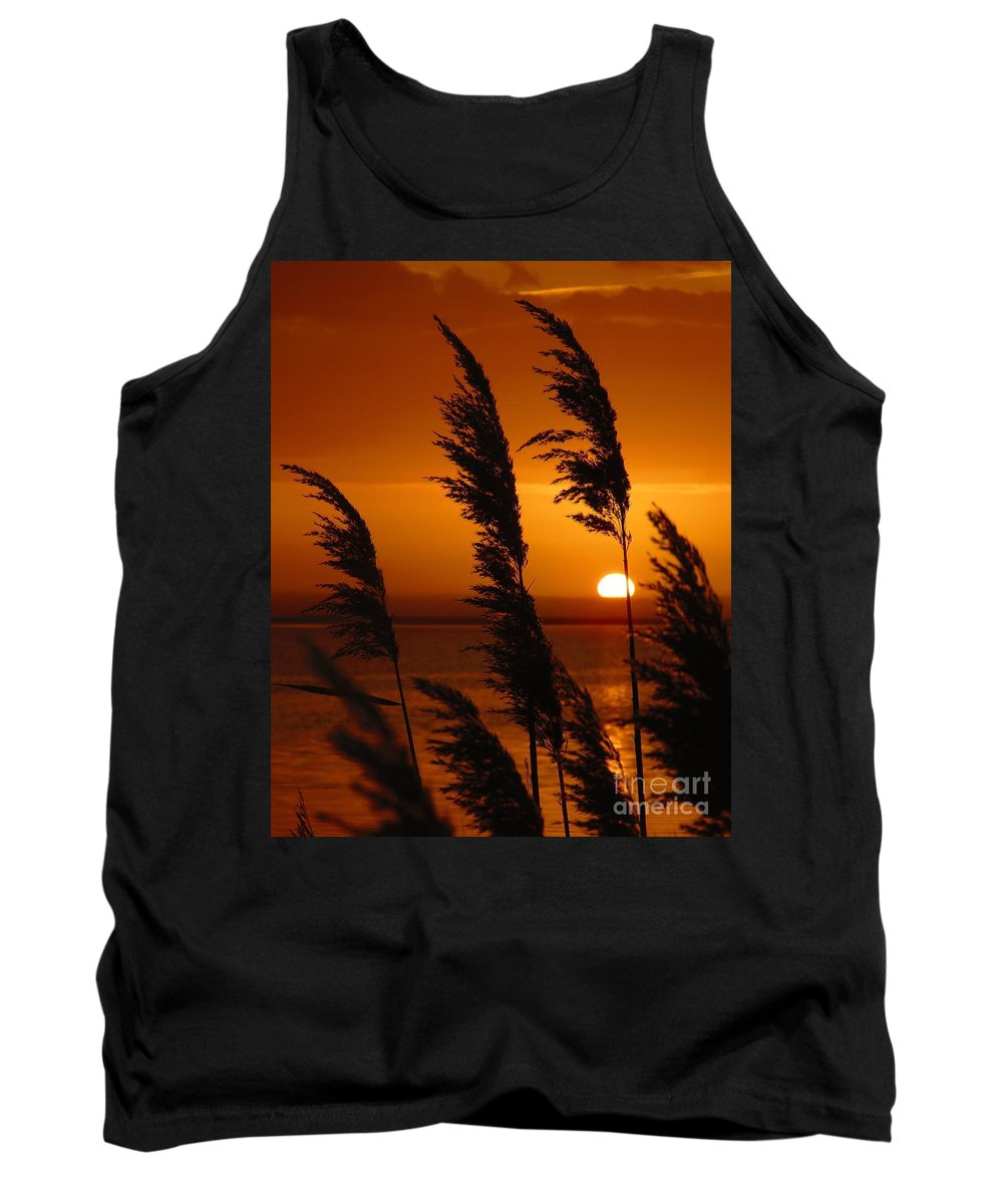 Sunrise Tank Top featuring the photograph Dawn Grasses by Rrrose Pix