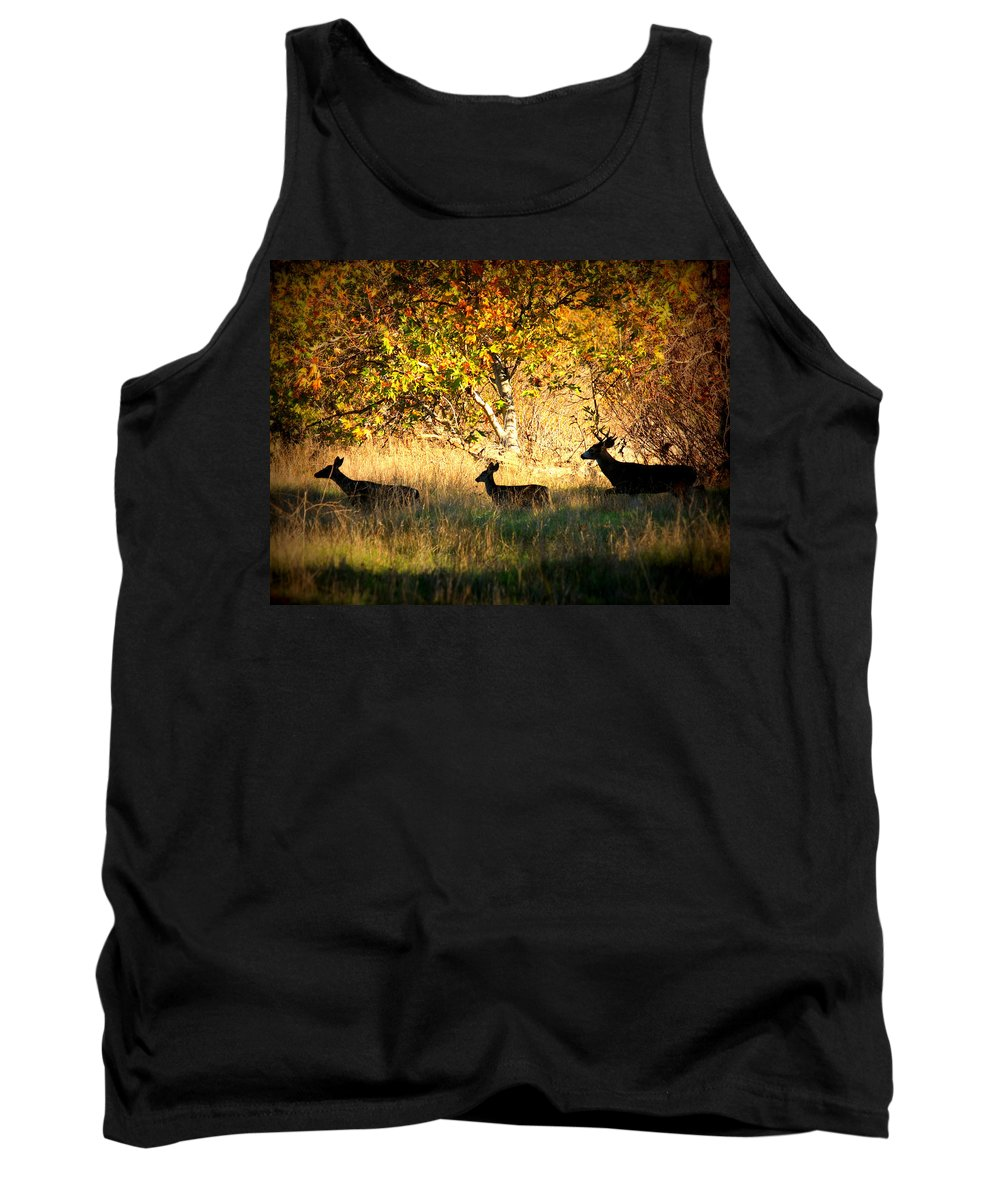 Landscape Tank Top featuring the photograph Deer Family In Sycamore Park by Carol Groenen