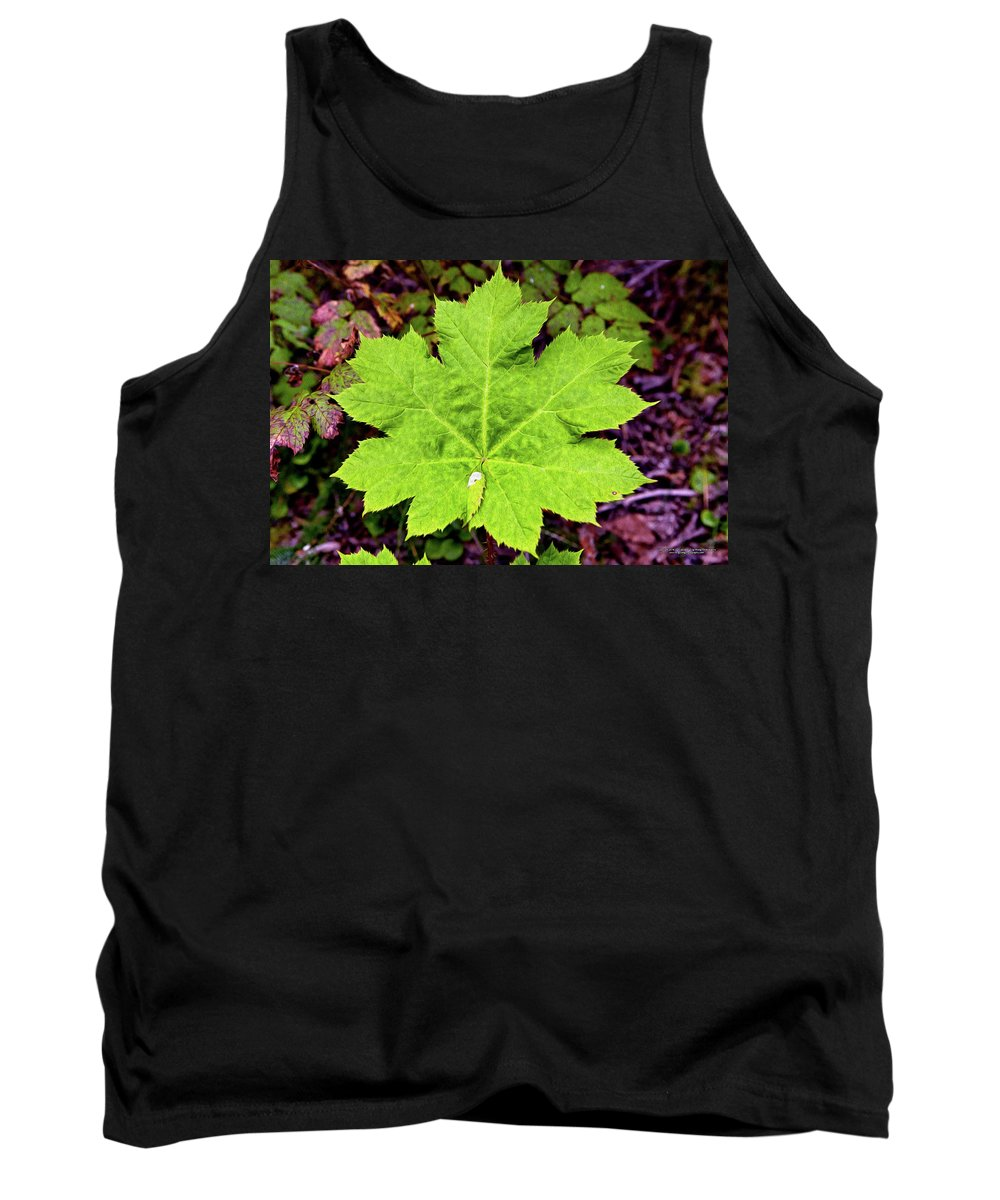 Nature Tank Top featuring the digital art Devil's Club Leaf by Christopher Eng-Wong