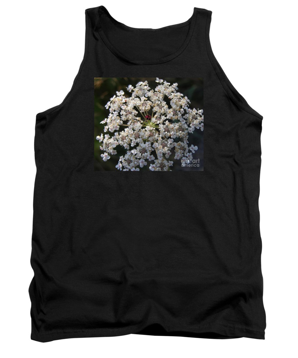 Wildflowers Tank Top featuring the photograph Dew On Queen Annes Lace by Lynn Quinn