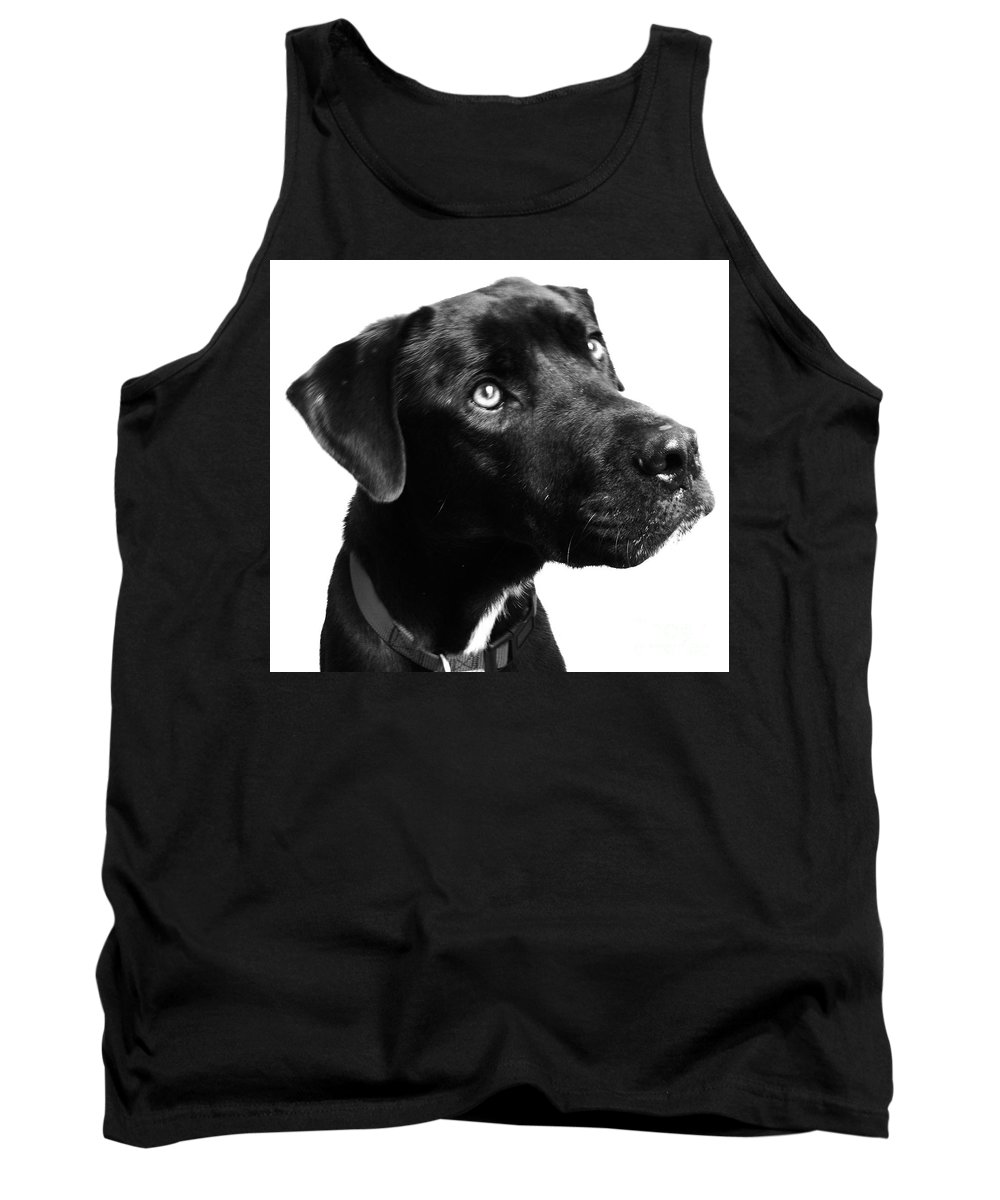 Dogs Tank Top featuring the photograph Dog by Amanda Barcon