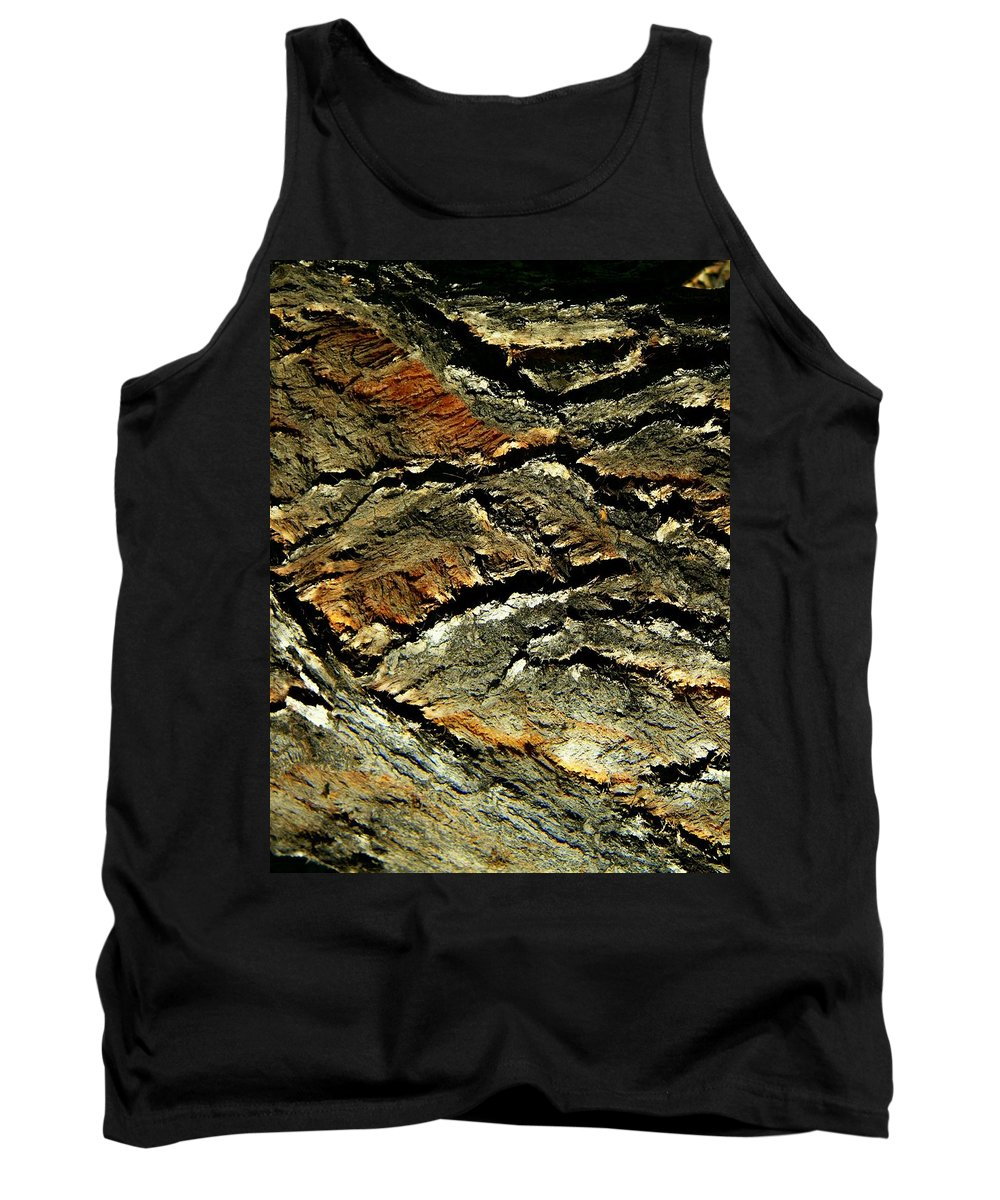 Abstract Tank Top featuring the photograph Down In The Valley by Lenore Senior