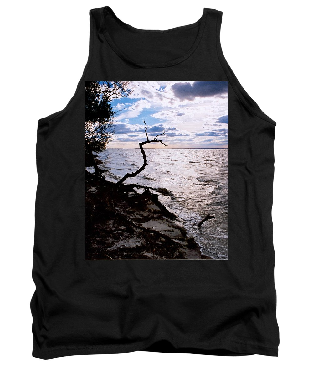 Barnegat Tank Top featuring the photograph Driftwood Dragon-Barnegat Bay by Steve Karol