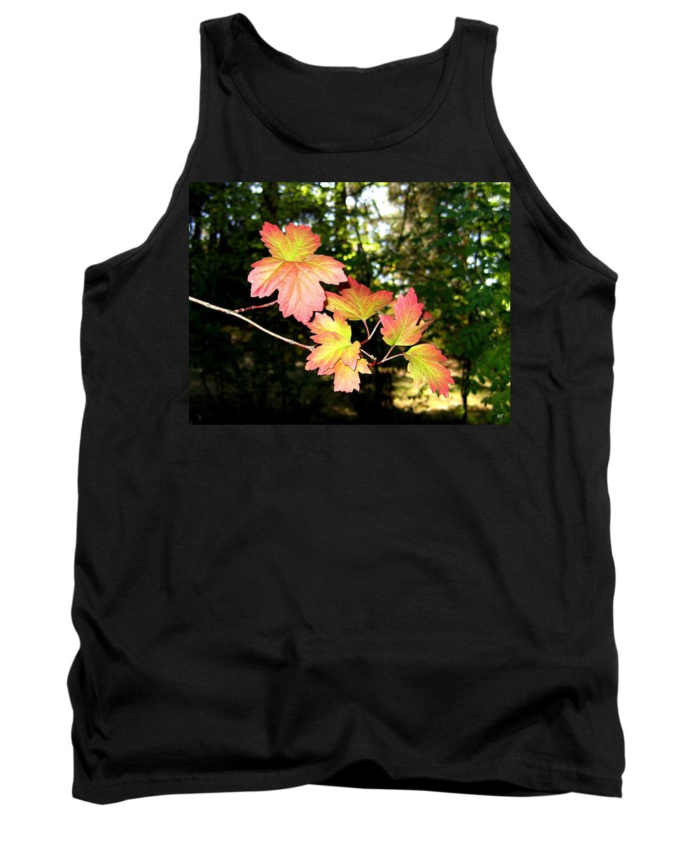 Autumn Tank Top featuring the photograph Early Days Of Autumn by Will Borden