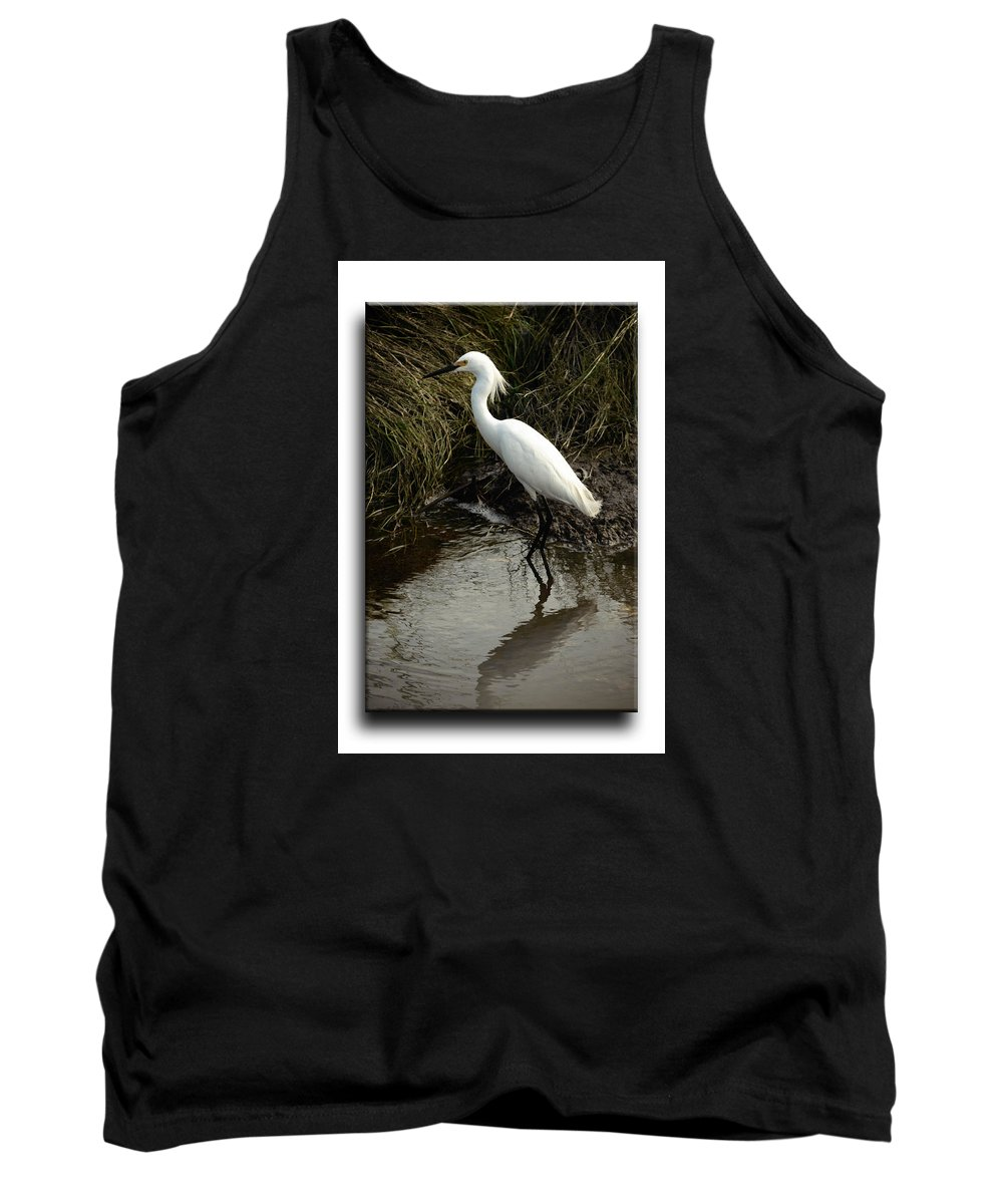 Bird Tank Top featuring the photograph Egret 2 by Leticia Latocki