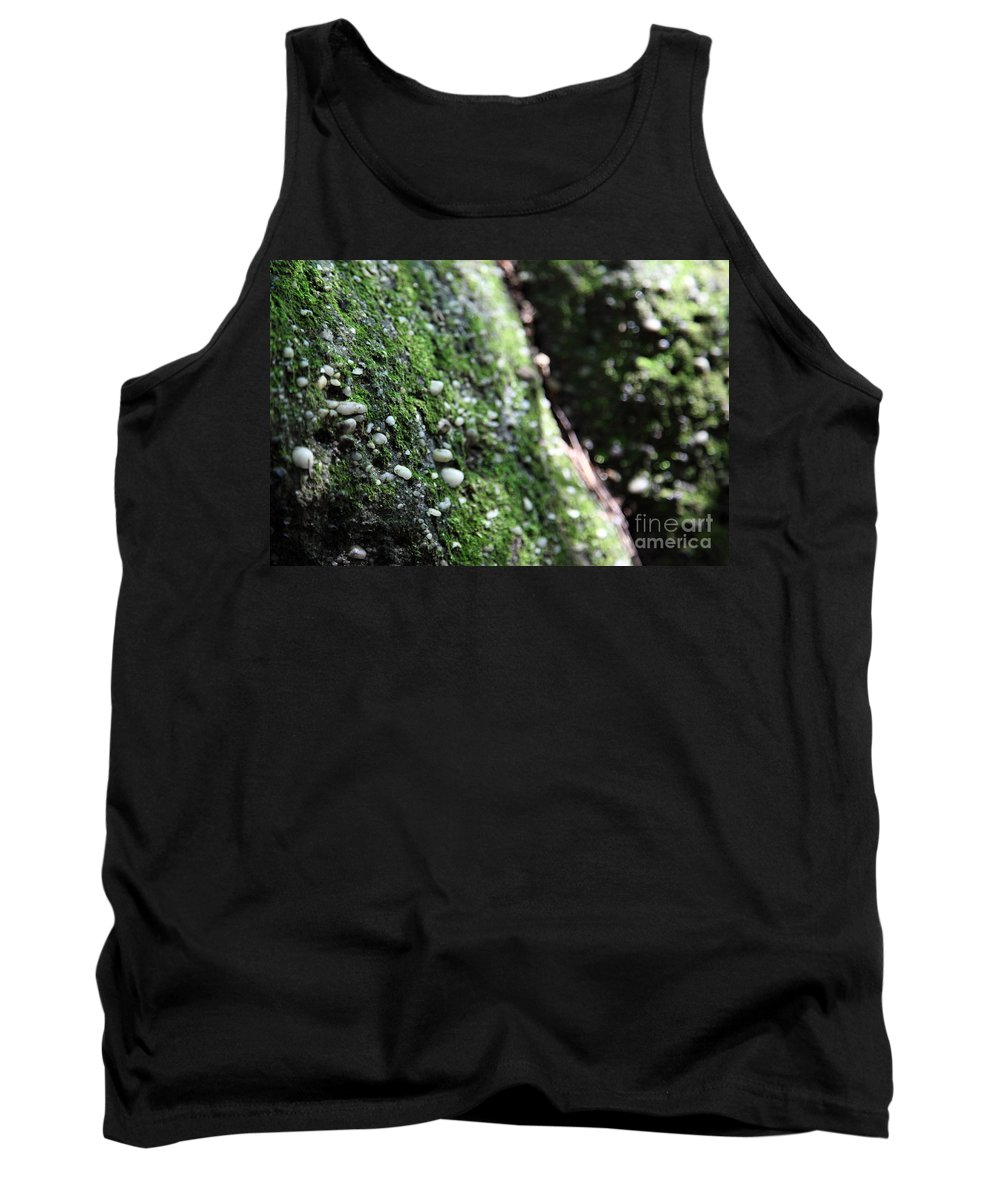 Rocks Tank Top featuring the photograph Embedded by Amanda Barcon