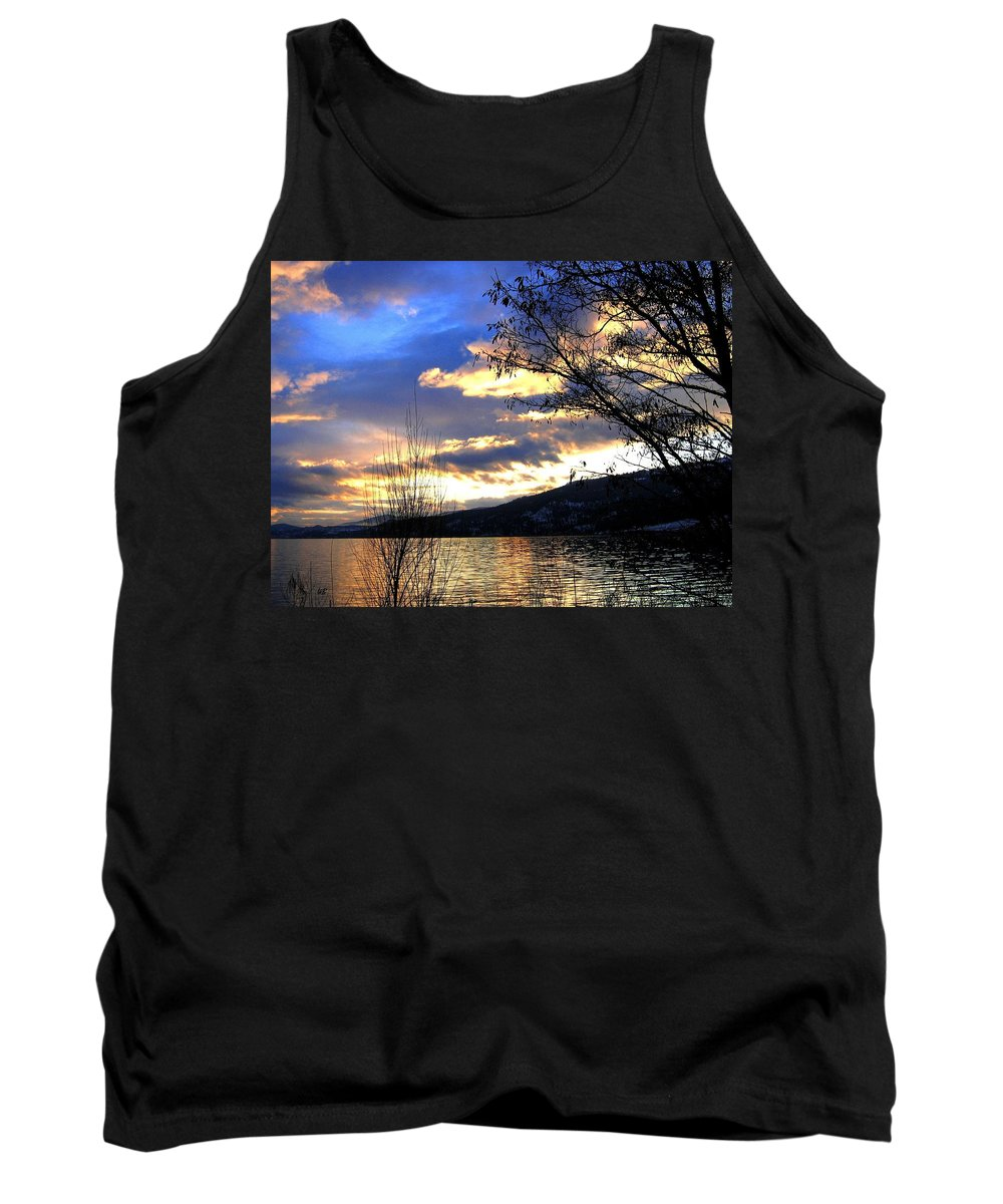 Sunset Tank Top featuring the photograph Evening Exhibition by Will Borden